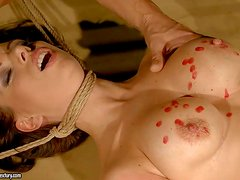 Bound beauty Vivien Bianchy with big tits and neat pussy