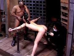 Sexy chick Lyla Storm is being locked in metal cage in BDSM session