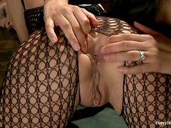 Amazing brunette chicks get their asses toyed and fucked