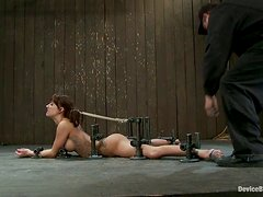 Anal Toying in Incredibly Kinky BDSM Video with Gia Dimarco