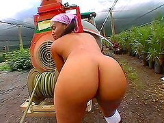 Big Booty Farming ends up with a big cock fucking