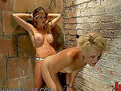 Lesbian Gloryhole Turns Into BDSM Scene