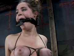 Brune hussy Charlotte Vale have her big tits gripped in a vice