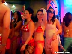 Sexy bodies writhing and banging at bikini party