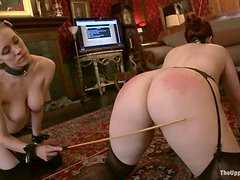 Slutty girl gets whipped, toyed and then face fucked