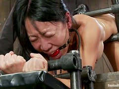 Double toying session for a kinky Asian slave