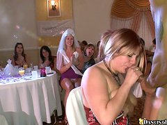 Naughty chicks give a blowjob to a guy at the hen party