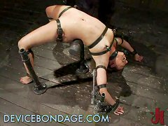 Skanky Teen Whore Tied Up & Destroyed