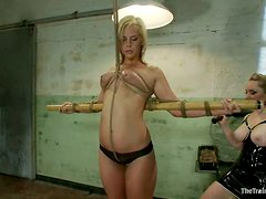 Divine blondies are making the BDSM video break the rate record