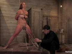 Busty Babe's Fucked By Her Master While Tied Up