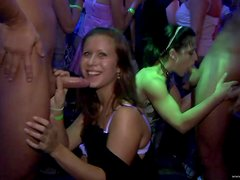 Kinky Drunk Hotties Suck Big Cocks