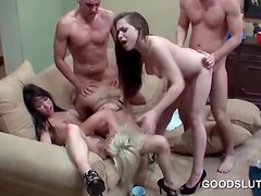 Hot studs nailing drunk horny babes in gangbang