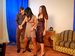 Lascivious brunette babes take part in hot threesome adventure