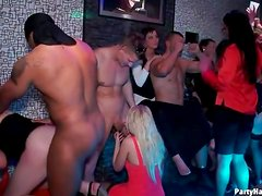 Many dicks sucked on at hot party