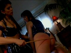 Booty kinky brunette Dana has a strong desire to polish wet cunt with a toy