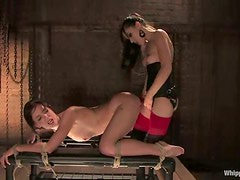 Riley Shy gets tortured and fucked by dominating brunette Sasha Grey