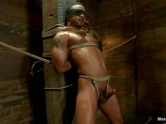 Damian Taylor gets his cock licked and rubbed in amazing BDSM scene