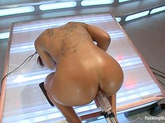 Leilani Leeane loves being double penetrated by a fucking machine