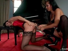 Busty and booty brunettes in stockings are in lesbian passion