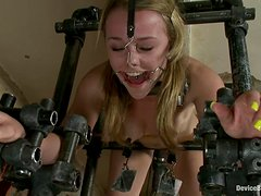 Fucking Machine and Vibrator Taking Jessie Cox to a Forced Orgasm