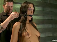 Lyla Storm gets tortured and enjoys various toys in her amazing holes