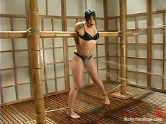 Bondaged babe gets sprayed and dunked in the tank