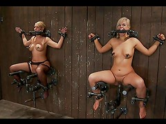 Two submissive blondes getting toyed in kinky bondage situations