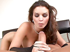 Fiery Vixen sucks on a hard cock