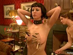 Two hot chicks get tied up and clothespinned by the master