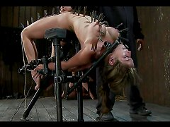 Caged submissive bitches in bondage scene!