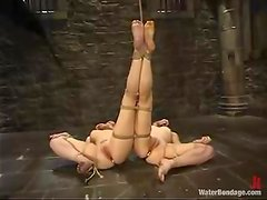 Tied up Dana and Pinky lick pussies in water bondage video