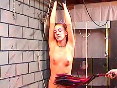 Curly babe getting nailed in BDSM