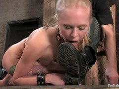 Bounded Sarah Jane Ceylon gives a blowjob to her master