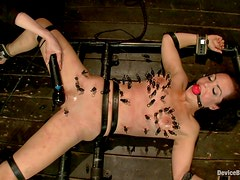 Bryn Blayne gets bonded and tortured with clothespins