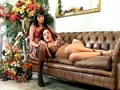 Two deliciously hot and sexy brunettes are in a wild threesome