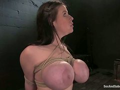 Daphne's tits are about to explode from the bondage