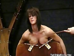 Busty bondage of Daniela in hardcore nipple clamped punished