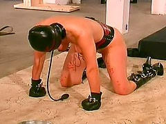 Hooded and bound girl takes abuse