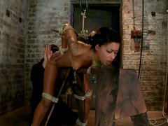 Skin Diamond moans loudly while getting tortured in a basement