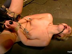 A compilation of a hardcore BDSM shit is here
