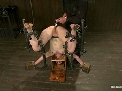 Sophie Monroe gets her holes stuffed with toys while being in pillory