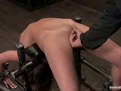 Naughty Jessie Cox gets her pussy drilled deep in BDSM vid
