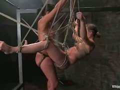 Bondage suspension for Devaun in the lesbian BDSM