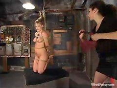 Harmony gets beaten and tortured in a hot BDSM clip
