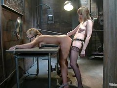 A lewd dominatrix toys her slave's cunt before smashing it with a strapon