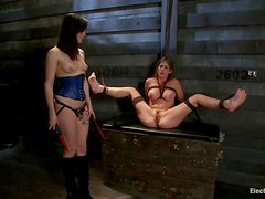 Busty Felony gets drilled with a strap-on and wired