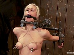 Amazing Tara Lynn Foxx gets tortured by her master