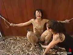 Dylan Ryan enjoys mud on her body and a dildo in her cunt