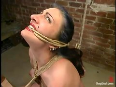 Charming brunette sex slave wants to be tortured