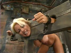 Charming blond barbie Stacy is getting abused